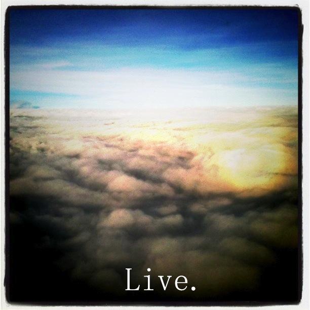Live Free 2